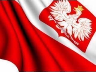 Доля офшорного рынка онлайн-гемблинга в Польше достигла 47% в 2020 году